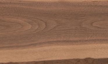 heartwood sapwood