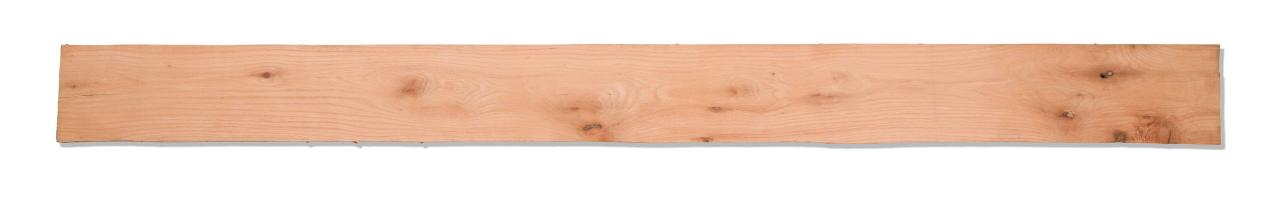Red Oak 2AC 02