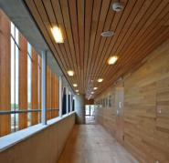 School of Music floor, wall and ceiling cladding