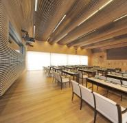 Prim Hall ceiling and wall cladding